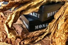 021_crazy_monkey